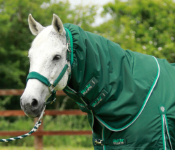 Buster 200 Turnout Rug Neck Cover (200g Fill)
