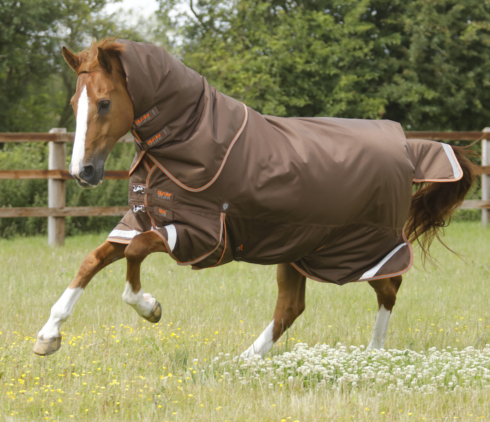 Titan 300g Turnout Rug with Neck Cover